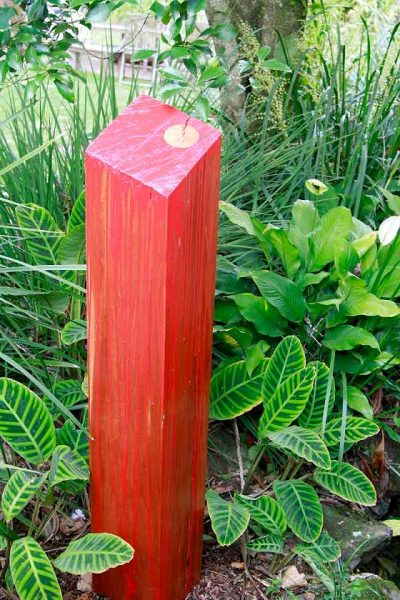 Urban Red Gum – Dorothy Haig